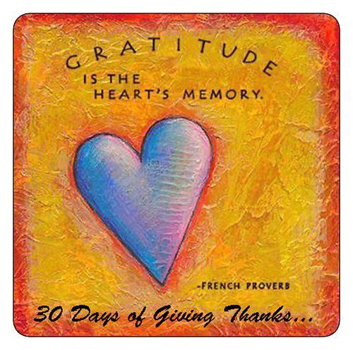 Gratitudeb