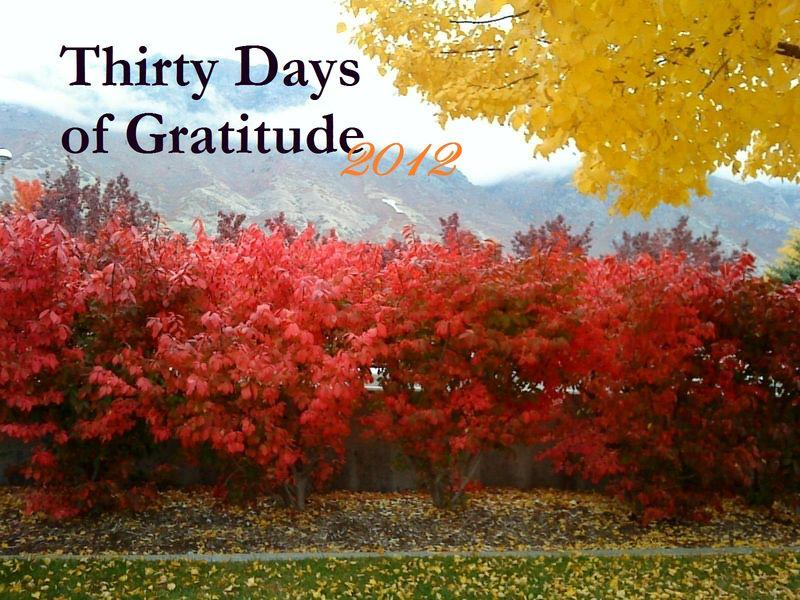 Thirty Days of Gratitude 2012