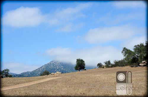 Grasslands3